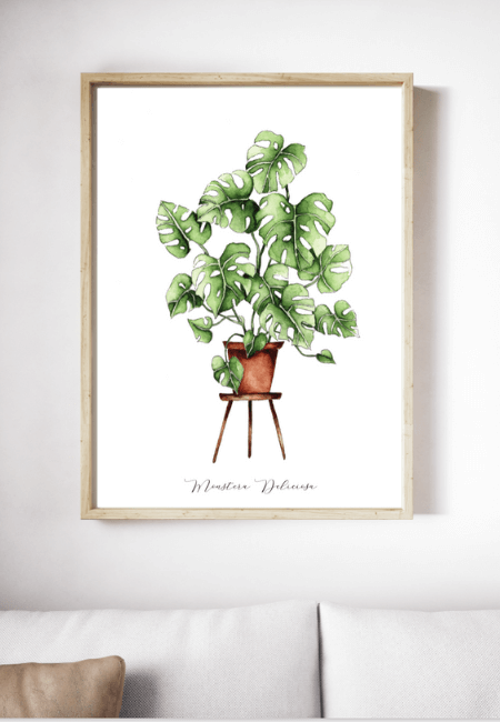 Roślinny Plakat Monstera Deliciosa _ Design Your Wedding